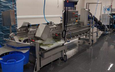 Knook AGF maakt efficiëntieslag met nieuwe weeg-, snij- en verpakkingslijn